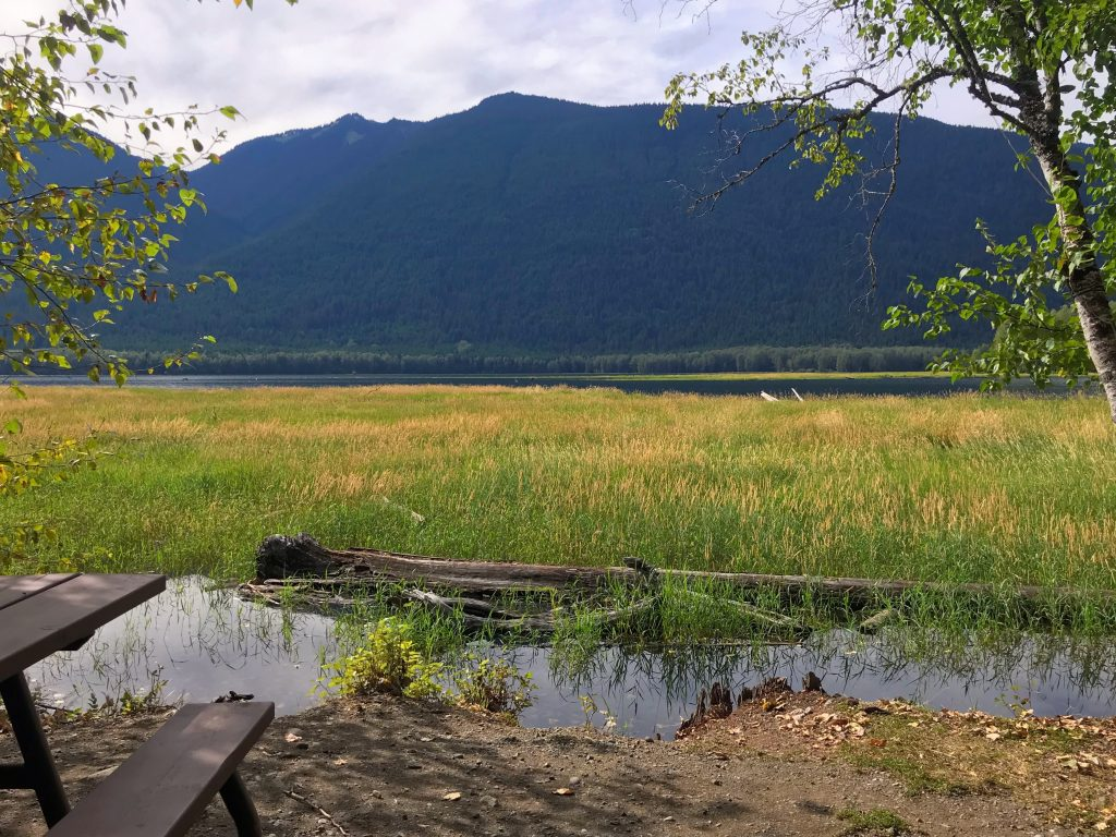 Ross Lake Campground